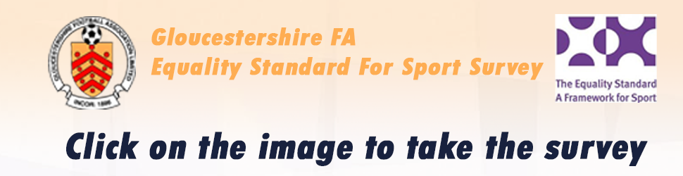 equality standard for sport survey june 2020