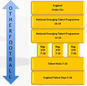 Disability Talent Pathway