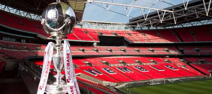 Image result for fa trophy