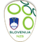 Slovenia badge