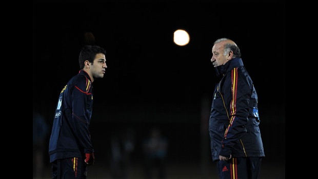 Cesc Fabregas and Vicente del Bosque