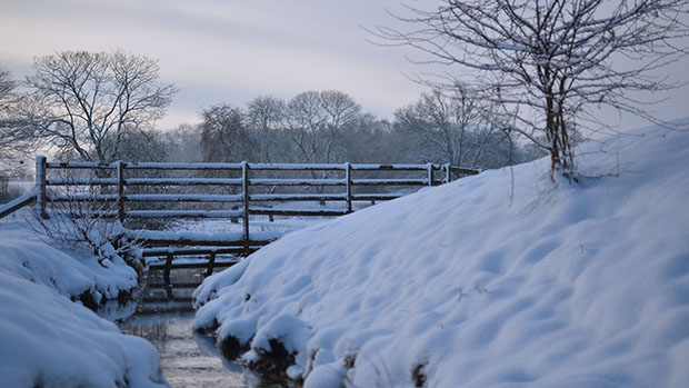 A snowy scene at St. George's Park